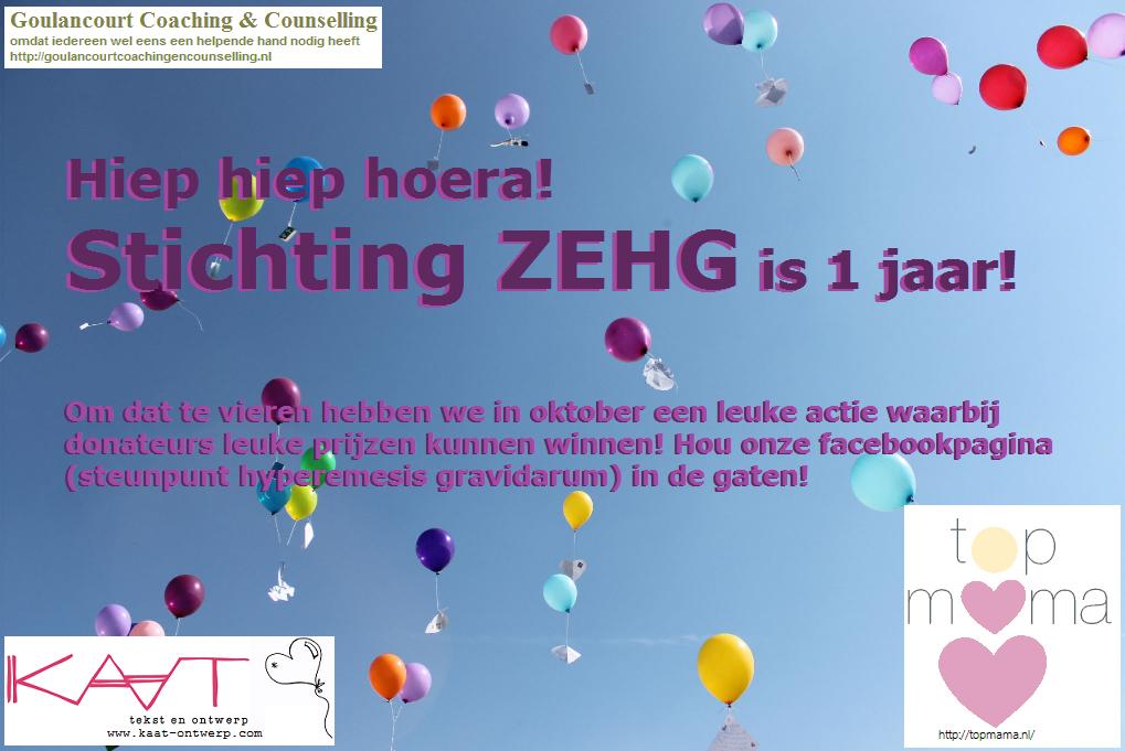 Hoera, stichting ZEHG is 1 jaar!